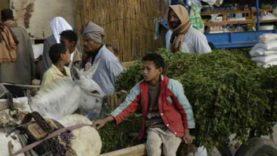 Imazighen d'Égypte en Thamazight
