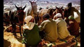 Awalino اجمل ما سمعته – La Voix de la Colère des Amazighs